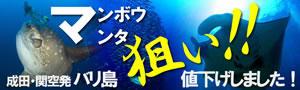 【マンボウ&マンタ狙いダイビング!】夏の風物詩♪7/14~10/13出発限定バリ島ダイビングツアー