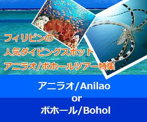 世界中のダイバーが虜になるフィリピンの2エリア!ボホール&アニラオ特集