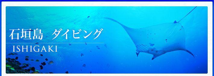 石垣島ダイビングツアー