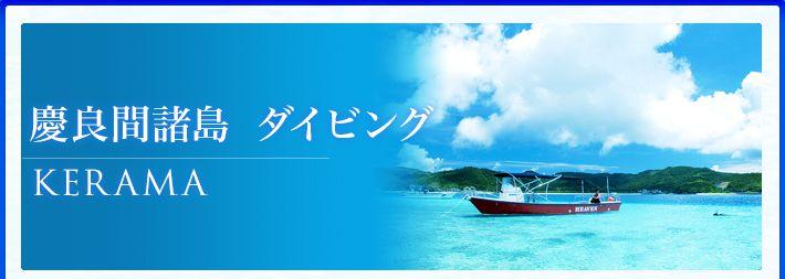 慶良間諸島ダイビングツアー