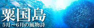 ★5月-6月限定!慶良間諸島&粟国島遠征ダイビング★