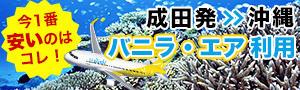 最安値はコレ!成田空港発バニラエア利用・那覇ダイビングツアー♪