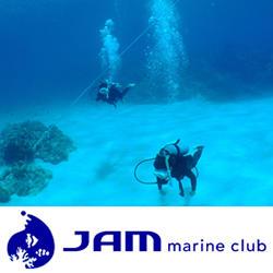 JAMマリンクラブ指定<br>到着日ダイビング付【器材付】