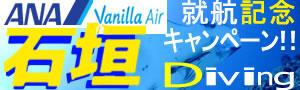 石垣島ANA・バニラエアSALE★透明度抜群の海へ♪「格安!石垣ダイビングツアー」