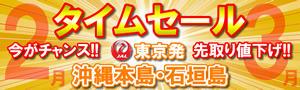 2月-3月出発限定タイムセール!沖縄本島・石垣島ダイビングツアーが激安価格で登場!