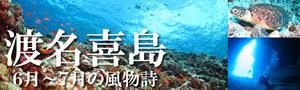 ★6月-7月限定!慶良間諸島&渡名喜遠征ダイビング★