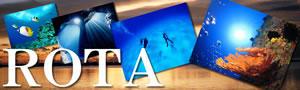 ★★★「ロタホール」シーズン到来!★★★ロタ島ダイビングツアー ブルーパームス指定